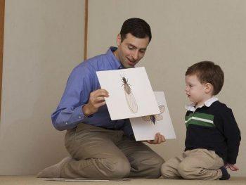 3 cách dạy con sớm tự lập được nhiều phụ huynh lựa chọn